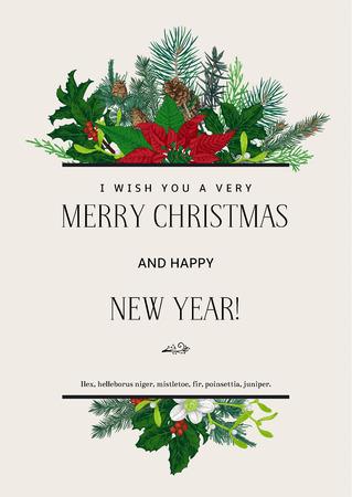 flor de pascua: Tarjeta del vector de la vendimia. Les deseo una muy Feliz Navidad y Feliz Año Nuevo. Elemento de diseño. Vectores