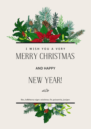 poinsettia: Vintage vector card. I Wish You A Very Merry Christmas And Happy New Year. Design element. Illustration