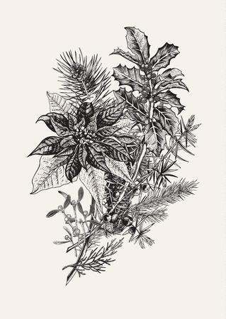 겨울 꽃다발입니다. 빈티지 벡터 일러스트 레이 션. 요소를 디자인합니다. 새해 및 메리 크리스마스 해피.