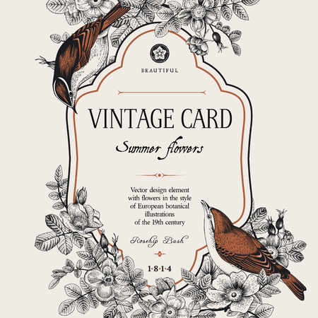bird: Vector vintage floral card. Two birds in the wild rose bushes.