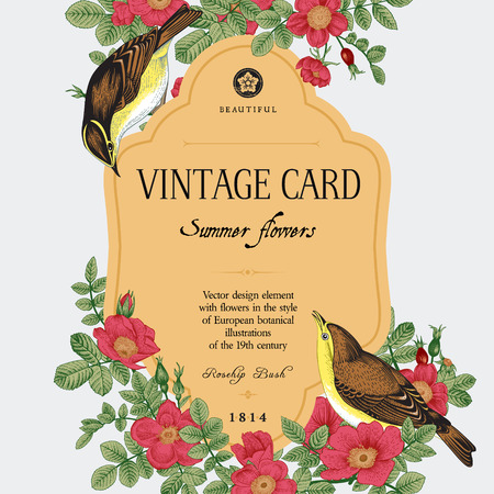 Vector vintage floral card. Two birds in the wild rose bushes. Фото со стока - 45602590