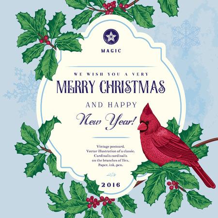pajaros: Tarjeta del vector de la vendimia. Le deseamos una muy Feliz Navidad y Feliz A�o Nuevo. Un p�jaro en una rama de acebo. Vectores