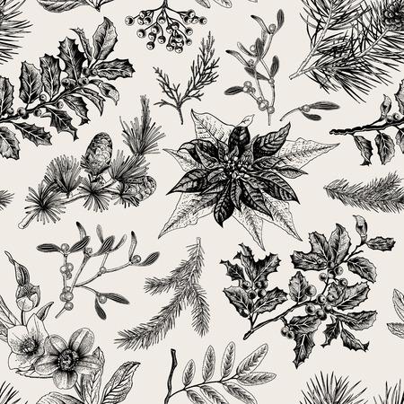 flor de pascua: Patrón de la vendimia sin fisuras. Fondo botánico de Navidad.
