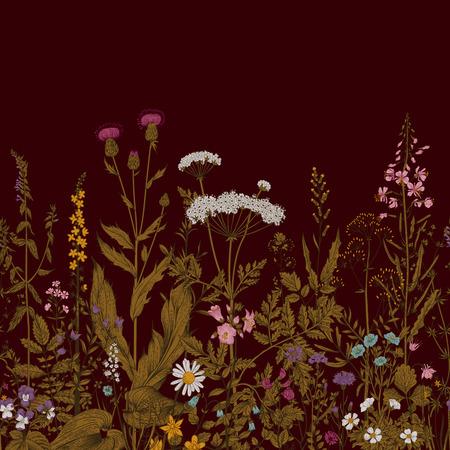 vinous: Vector seamless floral border. Herbs and wild flowers. Botanical Illustration engraving style. Vinous Illustration