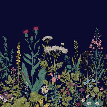 Vector senza soluzione di continuità bordo floreale. Erbe e fiori selvatici. Illustrazione botanica incisione stile.