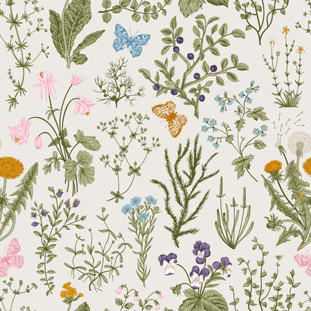 Vector vintage seamless floral pattern. Herbs and wild flowers. Botanical Illustration engraving style. Colorful  イラスト・ベクター素材