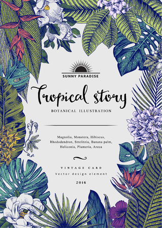 vintage card Botanical illustration. Tropical flowers and leaves.