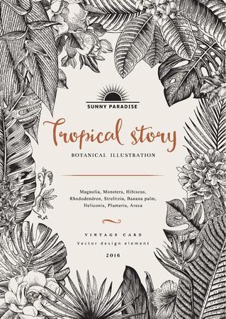 vintage card botanical illustration  イラスト・ベクター素材