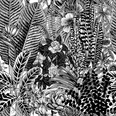 vriesea: Vector seamless vintage pattern. Exotic flowers and plants. Botanical classic illustration.