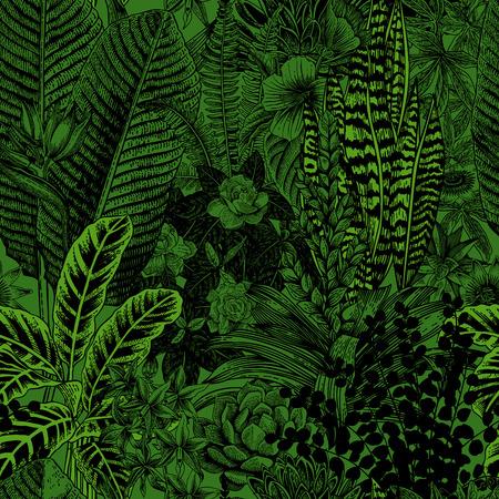 Wektor bez szwu deseń archiwalne. Egzotyczne kwiaty i rośliny. Botaniczna klasyczne ilustracji.