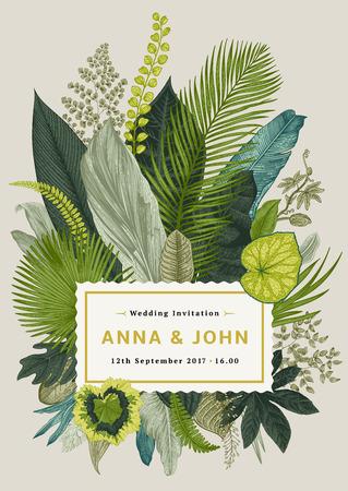Tarjeta de la vendimia del vector. Invitación de boda. Ejemplo botánico. hojas tropicales.