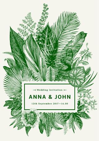 Tarjeta de la vendimia del vector. Invitación de boda. Ejemplo botánico. hojas tropicales. Verde. Vectores