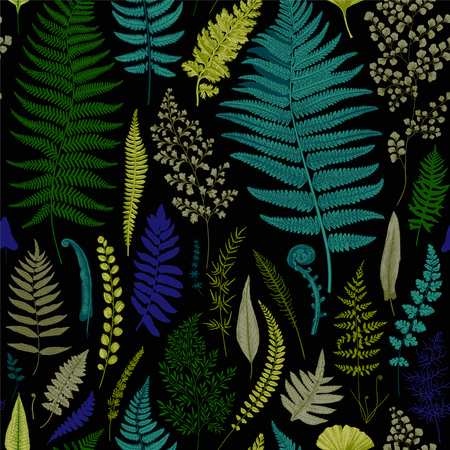 シームレス パターン。シダ。ビンテージ ベクトル ボタニカル イラスト。鮮やかです