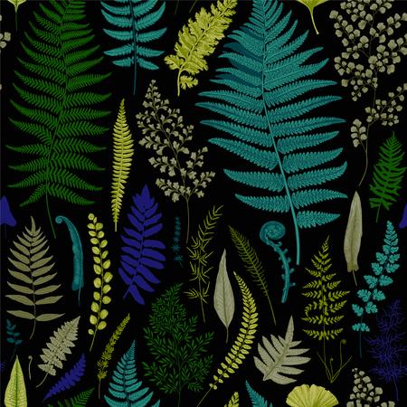 Seamless pattern. Ferns. Vintage vector botanical illustration. Vivid