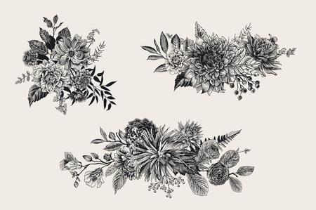 Estate e autunno mazzi di fiori. Dalie, Ruscus, Viburnum, Ranunculus. Floristica moderna. Illustrazione vettoriale Bianco e nero Archivio Fotografico - 83921884
