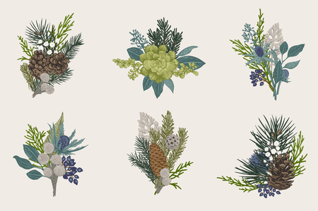 Winter set. Floral Christmas bouquets. Evergreen, cone, succulents, flowers, leaves, berries. Botanical vector vintage illustration. Stock Illustratie
