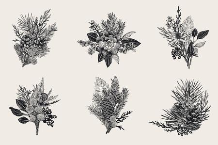 Winter ingesteld. Floral kerstboeketten. Wintergroen, kegel, vetplanten, bloemen, bladeren, bessen. Botanische vector vintage illustratie. Zwart en wit.