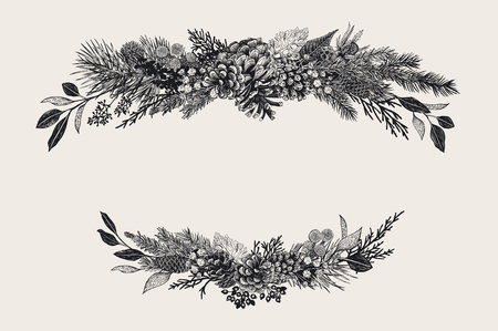 Winter set. Floral christmas compositions. Evergreen, cone, succulents, flowers, leaves, berries. Botanical vector vintage illustration. Black and white