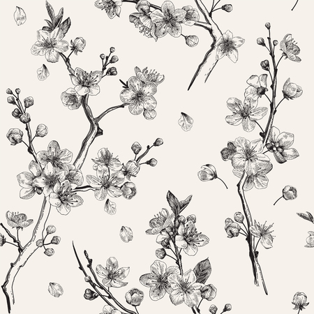 Sakura. Seamless pattern. Cherry blossom branches. Vector botanical illustration. Black and white