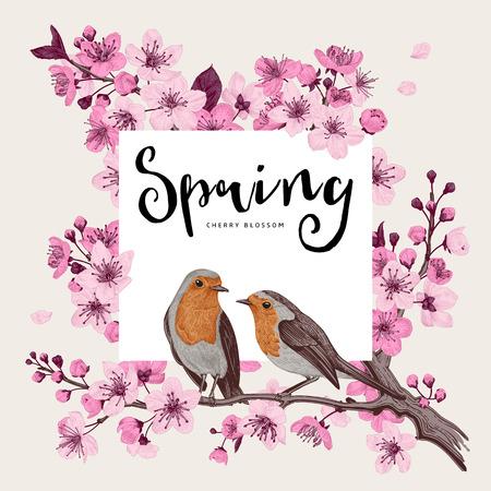 De lente. Roze kersenbloesem tak heks vogels. Vector botanische illustratie. Stockfoto - 93216386