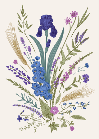 Summertime. Floral composition. Flowers and plants of fields and forests. Vector vintage botanical illustration. Vettoriali