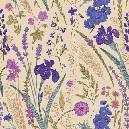Summertime. Seamless pattern. Flowers and plants of fields and forests. Vector vintage botanical illustration. Vektorgrafik