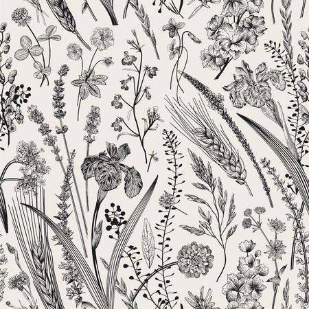 Summertime. Seamless pattern. Flowers and plants of fields and forests. Vector vintage botanical illustration. Black and white