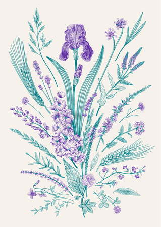 Summertime. Floral composition. Flowers and plants of fields and forests. Vector vintage botanical illustration. Çizim