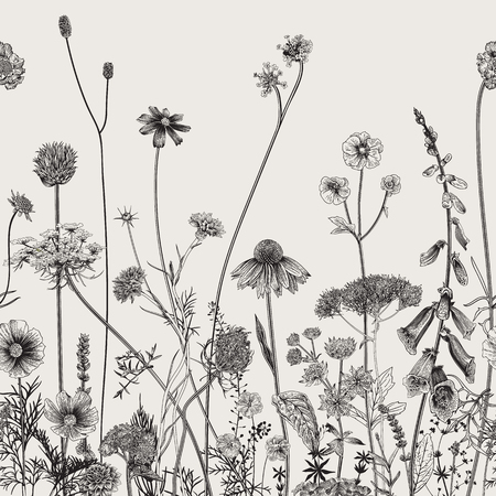 Floral border. Summer flowers. Vector illustration. Black and white 일러스트