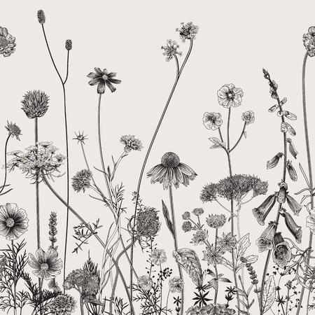 Floral border. Summer flowers. Vector illustration. Black and white Illustration