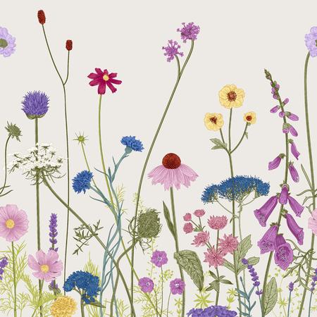 Nahtlose Blumengrenze. Sommerblumen. Vektor-Illustration. Bunt