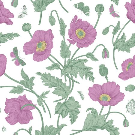 Vintage floral illustration. Seamless pattern. Purple Poppies with butterflies.
