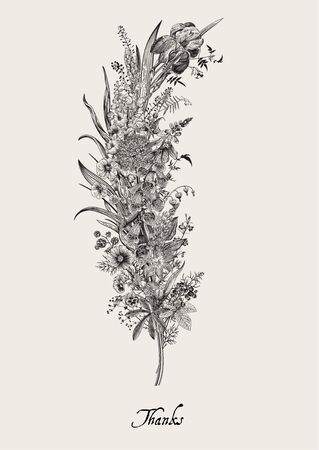 Lovely Garden. Flower feather. Vintage floral element. Spring and summer garden flowers. Black and white