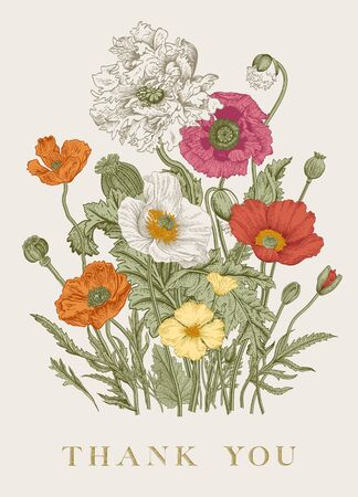 Vintage floral illustration. Bouquet. Flowers Poppies of various varieties. Thank you