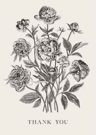 Vintage vector floral illustration. Flower arrangement. Peonies. Black and white. Greeting card. Thank you