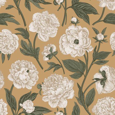 Seamless pattern. Classic peonies. Vector botanical illustration. Ilustracja
