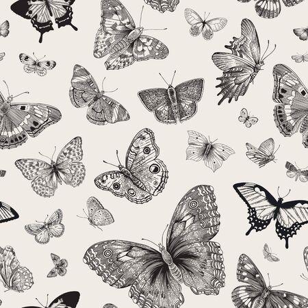 Papillons. Modèle sans couture. Illustration classique vintage de vecteur. Noir et blanc