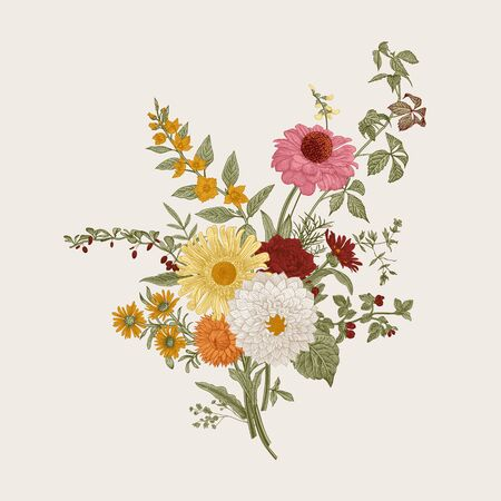 Autumn flowers. Classic flower arrangement. Vector botanical floral illustration. Colorful. Ilustração