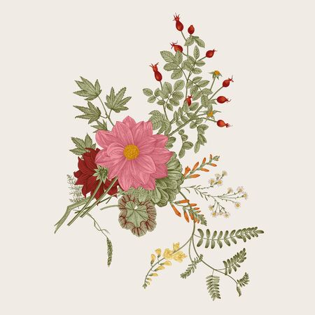 Autumn flowers. Classic flower arrangement. Vector botanical floral illustration.  イラスト・ベクター素材