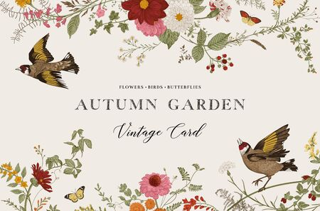 Autumn Garden. Vector horizontal card. Vintage floral elements. Flowers, birds, butterflies  イラスト・ベクター素材