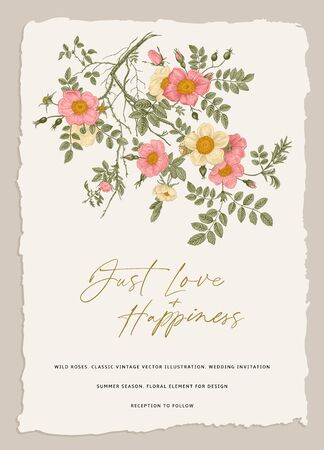 Wild roses. Wedding invitation. Vector floral illustration. Branch with pink and white roses