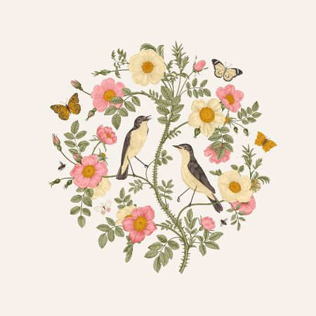 Birds and butterflies are in wild roses. Round Vector vintage classic floral composition.