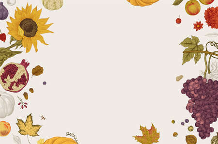 Happy Autumn. Harvest. Autumn horizontal card. Vector vintage illustration. Colorful