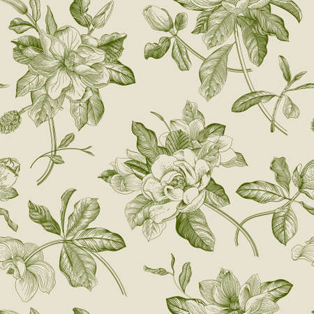 Magnolia grandiflora. Floral seamless pattern. Vector vintage botanical illustration. Green  イラスト・ベクター素材