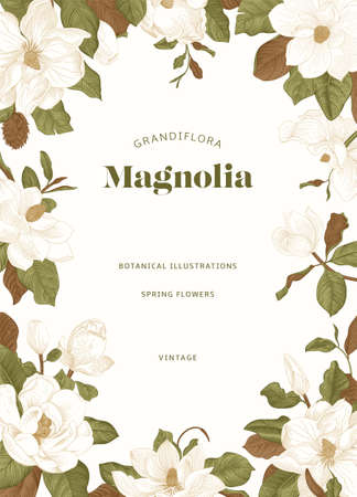 Magnolia. Spring flowers. Vector vintage botanical illustration. Invitation. Green and brown