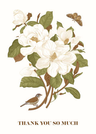 Magnolia. Spring here. Vector vintage botanical illustration. Thank you. Green and brown