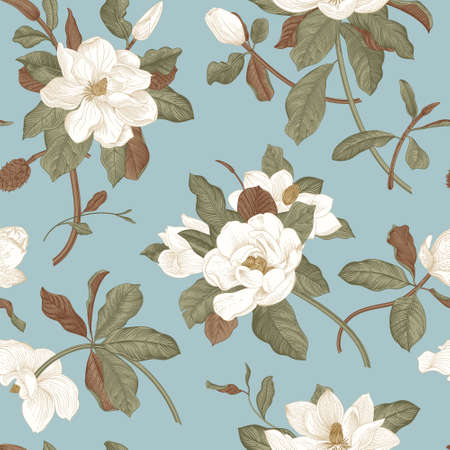 Magnolia grandiflora. Floral seamless pattern. Vector vintage botanical illustration  イラスト・ベクター素材