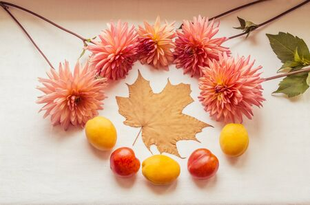 A beautiful frame for autumn holidays with pink dahlias, fruits and a dry maple leaf Banque d'images
