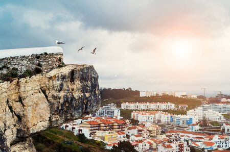 Beautiful landscape with seagulls, town settlement and sun light in Nazare, Portugal 免版税图像