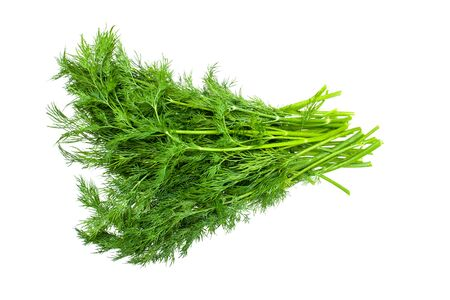 Fennel isolated. Dill herb fresh leaves pile isolated on white background Foto de archivo